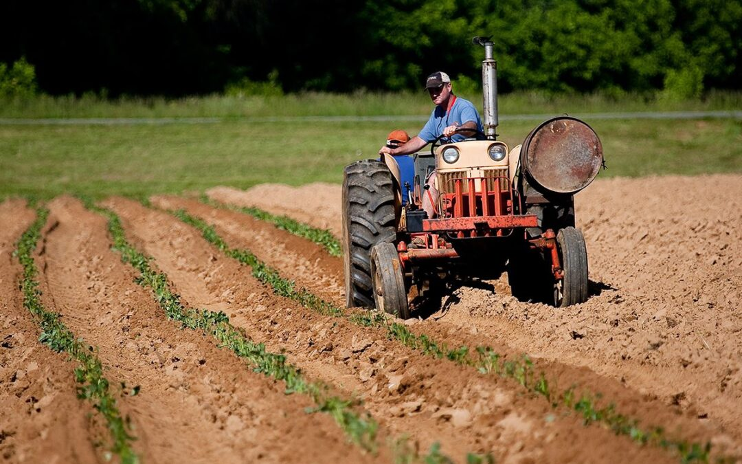 OSHA Issues COVID-19 Guidelines for Agriculture Industry