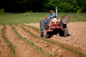 Agriculture - man riding on red tractor in field