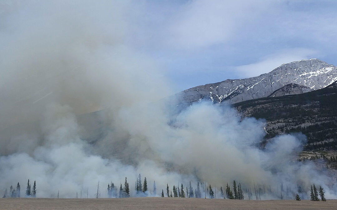 Protecting Workers from Wildfire Smoke