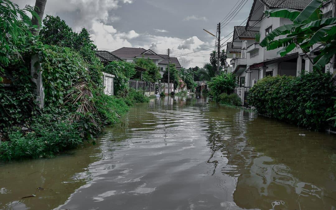 Hurricane Ida: OSHA Urges Response Crews to Prepare for Hazards
